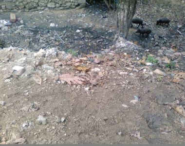 Le projet Gestion Urbaine de Proximité lance un autre chantier d'assainissement à Martissant